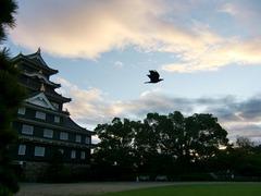 岡山城と烏。