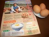 にわとり村の卵