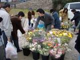 岡山京橋朝市のフラワーブース