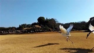 風の時代の「風の人」イメージフォト