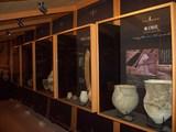 「津島遺跡」時代の変遷