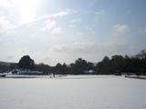 後楽園の芝焼き転じて雪化粧 2008.2.24