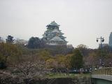 大阪城の桜 2007.3.31