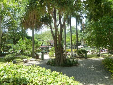 Green Park6