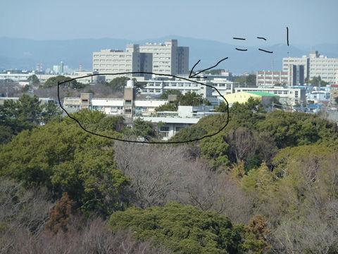 浜松城-7