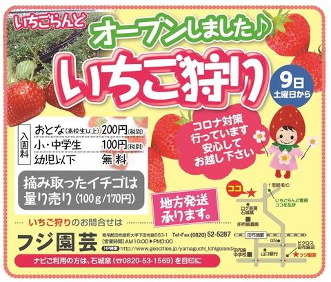 いちごらんど(フジ園芸)0108-04