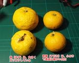 柚と酢橘の違い