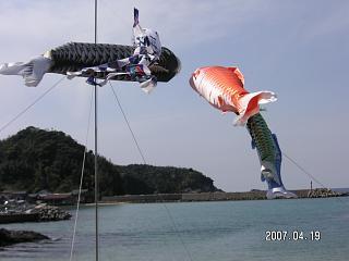 鯉のぼり・片江海岸