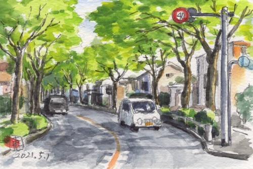 21新緑の天皇道路並木道_1