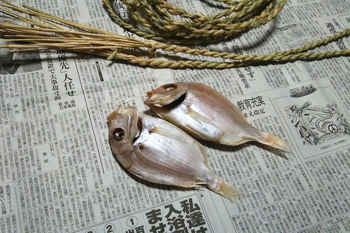 掛け鯛① (1)
