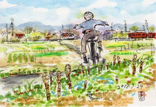 18つくし野原に自転車小僧632_1