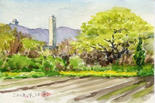 18新緑の柳風景641_1