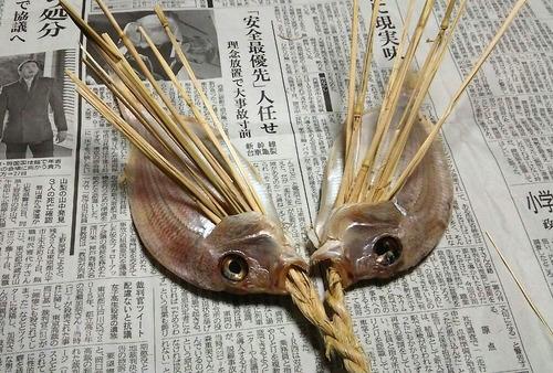 掛け鯛② (1)