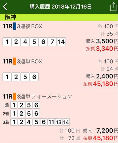 2018年12月16日阪神11R的中画像