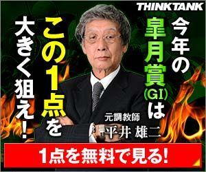 シンクタンク:皐月賞300_250