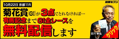 競馬セブン菊花賞