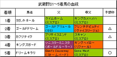 武蔵野ステークス2016結果