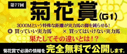 競馬スピリッツ菊花賞