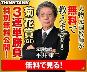 シンクタンク:菊花賞300_250
