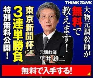 シンクタンク:東京新聞杯300_250