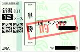 2018年8月5日新潟12R