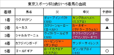 東京スポーツ杯2歳ステークス2017結果