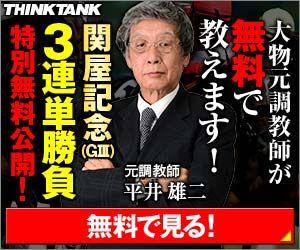 シンクタンク:関屋記念300_250