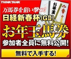 シンクタンク:日経新春杯300_250