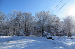 雪2019.12.23