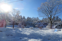 雪2019.12.23�