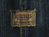 ヘラクレス1