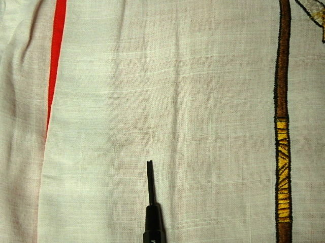 P3060053