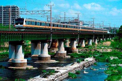 _TT19918 多摩川橋梁 E233系s-