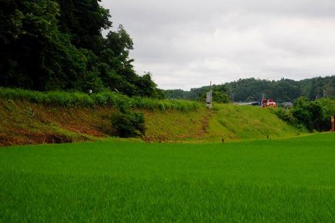 DSC_5643  玉川村s-