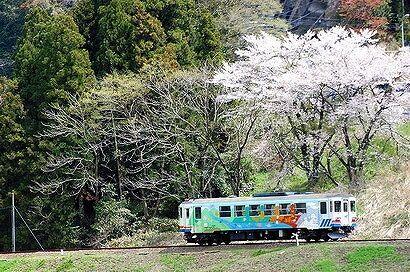 s-圧縮100長良川鉄道DSC_0117