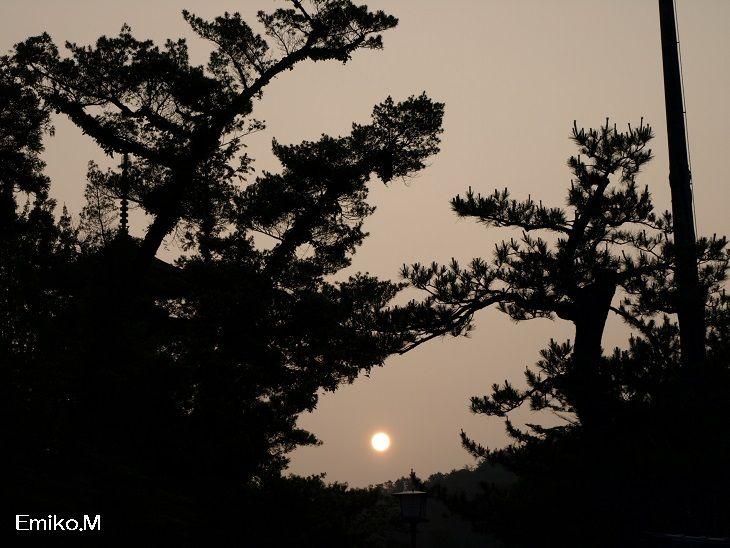 blog_A0094878.jpg
