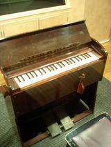 baby organ