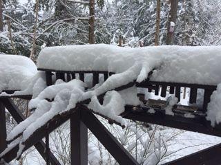 4月の雪2019