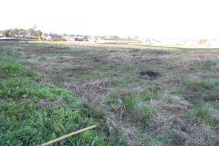 草刈り後の畑の処理