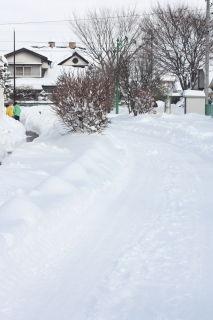 何年ぶりかの大雪・・・
