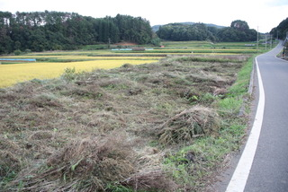 広い畑の草刈りに