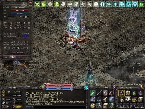 LinC1046