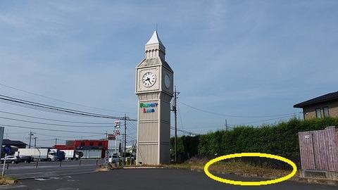 時計台横農地