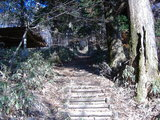 登山・・・というよりハイキングコース