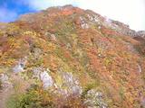 小朝日岳の紅葉(去年10/12)