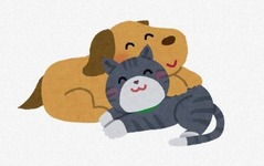 猫と犬がガチで喧嘩したらどっちが強いん?