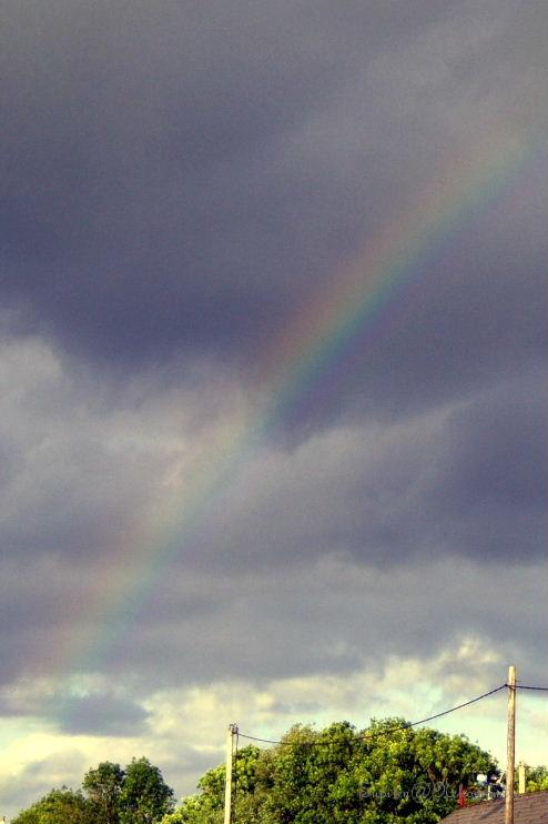 終わりの虹