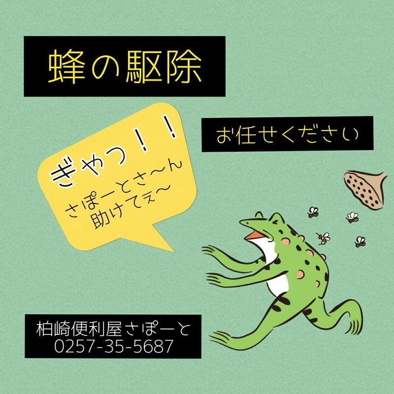 C360_2020-06-18-20-06-47-553