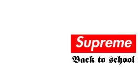 Supreme THE NORTH FACE