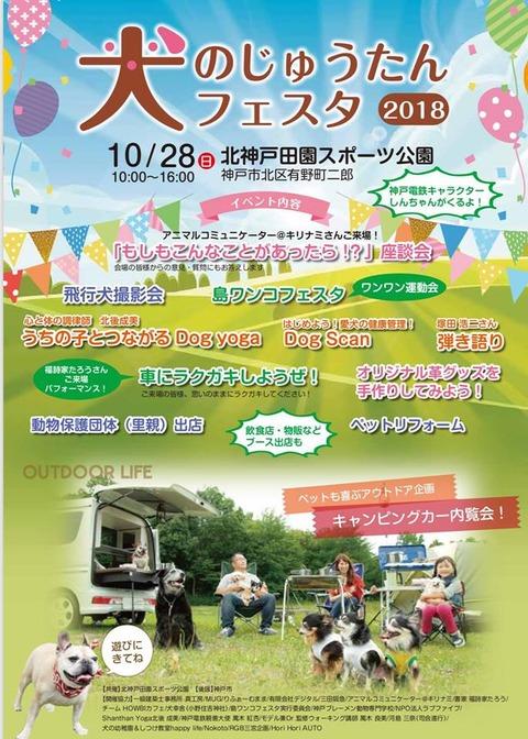 Ju_tan Festa Main Poster